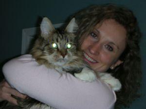 June_2006_cat