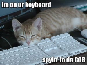 May_2007_im-on-ur-keyboard-spyin-fo-da-cob