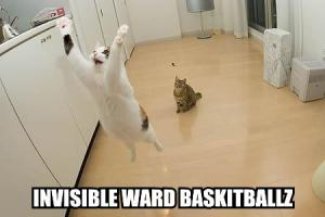 May_2007_lolcat4
