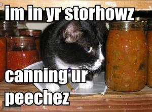 May_2007_lolcatrenderer3