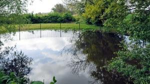 Benbow Pond