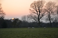 Scratch that other sheep photo, this was the inspiration of English romanticism.
