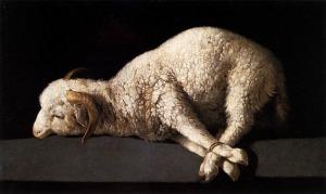 lamb_thumb