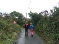 Pembrokeshire lanes
