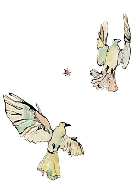 Doves, 5x7