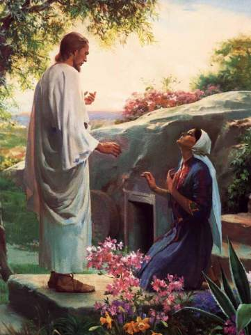 grace before meal essayist Saying grace is the christian practice of reciting a short prayer before or after a meal requesting or thanking god for his gifts to us catholic grace prayers to use before and after meals search the site go.
