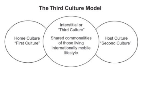 Image result for third culture kids