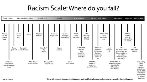 Image result for racism scale